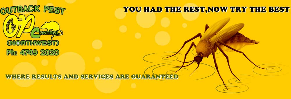Outback Pest Control North West - Banner